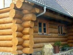 Дома из дикого сруба