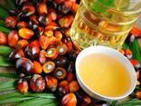 Пальмовое масло - фото 2