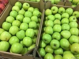 Польское яблоко от производителя La-Sad - photo 8