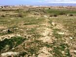 Продается земельный участок сельскохозяйственного назнач. - фото 3