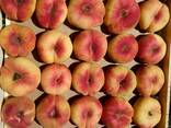 Саженцы плодовых культур - фото 2