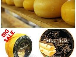 Сыр Мааздам Твердые сыры Молодые сыры Мягкие сыры