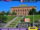 Тур на Ереванский Конячный завод Арарат - фото 1