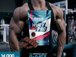Whey Pro Protein - Պրոտեին Հարստացված է BCAA; L-Glutamin - фото 1