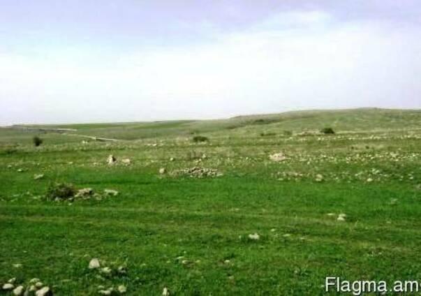 Земельный участок в с. Аралер